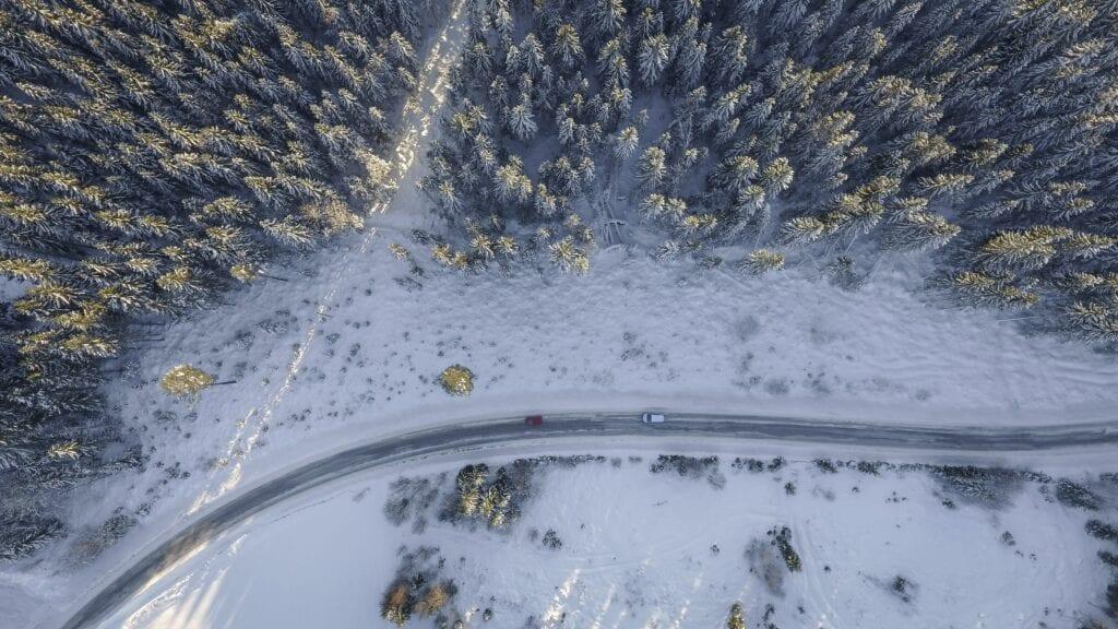 A Journey through Winterland